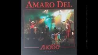 Amaro del - Poy zvenyi moya gitara (Official audio)