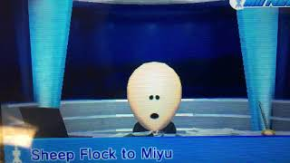 Tomodachi Life - Mii News - Sheep 🐑 Flock to Miyu