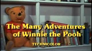 The Many Adventures of Winnie the Pooh - 12 - Hip Hip Pooh Ray