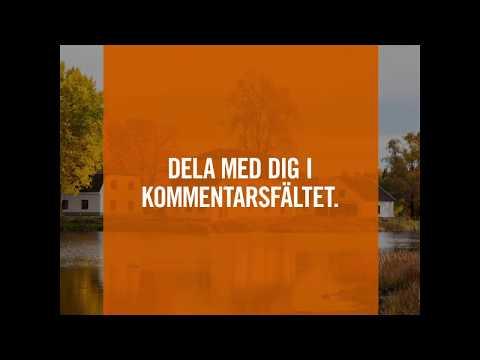 Svenskarnas drömboende