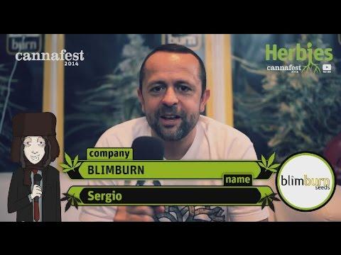 BlimBurn Seeds @ Cannafest 2014