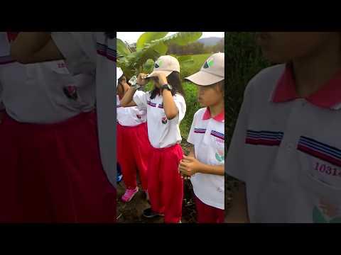 花蓮縣中正國小403~小小農夫農場體驗~種玉米-4 - YouTube