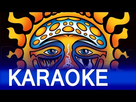 Sublime Santeria Lyrics Karaoke Chords Chordify