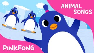 The Penguin Dance | Animal Songs | PINKFONG Songs for Children width=