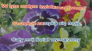 Karaoke   Biesiadka   W tym małym kwiatku czerwonym