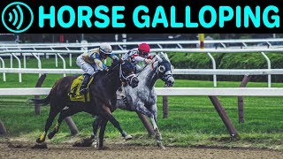 HORSE GALLOPING SOUNDS  - Horse Running | Free Galloping Horses Noise Sound FX for Download