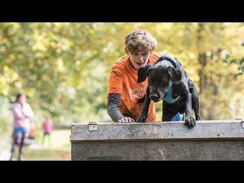 Training your dog for Muddy Dog Challenge