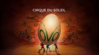OVO - Banquete (Live)