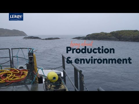 Lerøy about production & environment