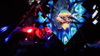 Ritual Festival - Module Virus