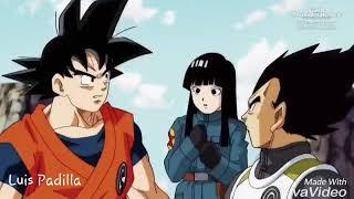 Goku ssj 4 vs goku ssj blue amv painkiller