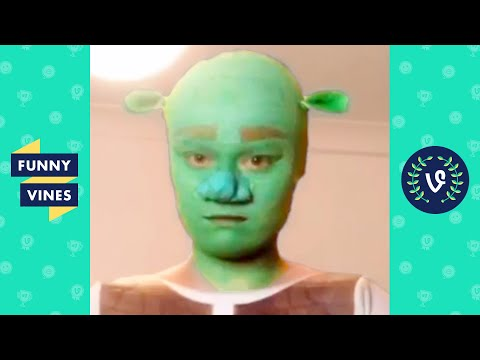 [1 HOUR] FUNNY VIRAL VIDEOS | BEST OF THE YEAR 2020