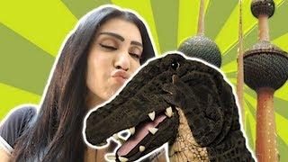 التمساح الحلقة ١٣: الرحلة الكويتية الجزء الثاني   Temsa7LY 1