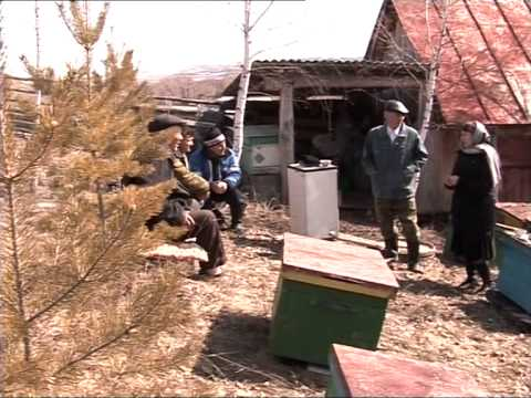 История деревни Елдәр