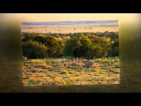 South Africa 2 – Addo Elephant Park to Graaff-Reinet