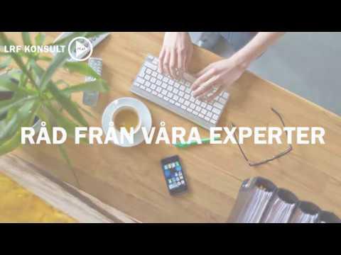 Råd från våra experter - skattetips med Fredrik Rosén
