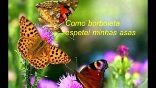Borboleta - Poema de Santa Catarina