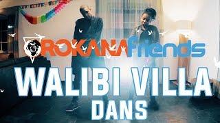 Walibi Villa Dance | Orokana Friends