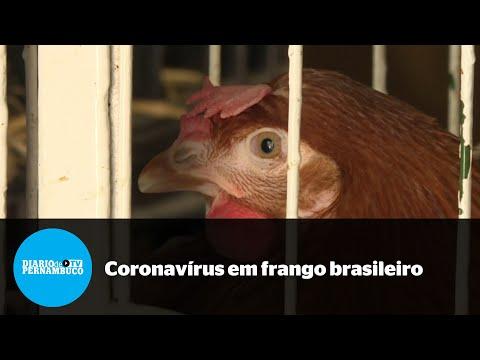 China detecta vírus da Covid-19 em frango brasileiro