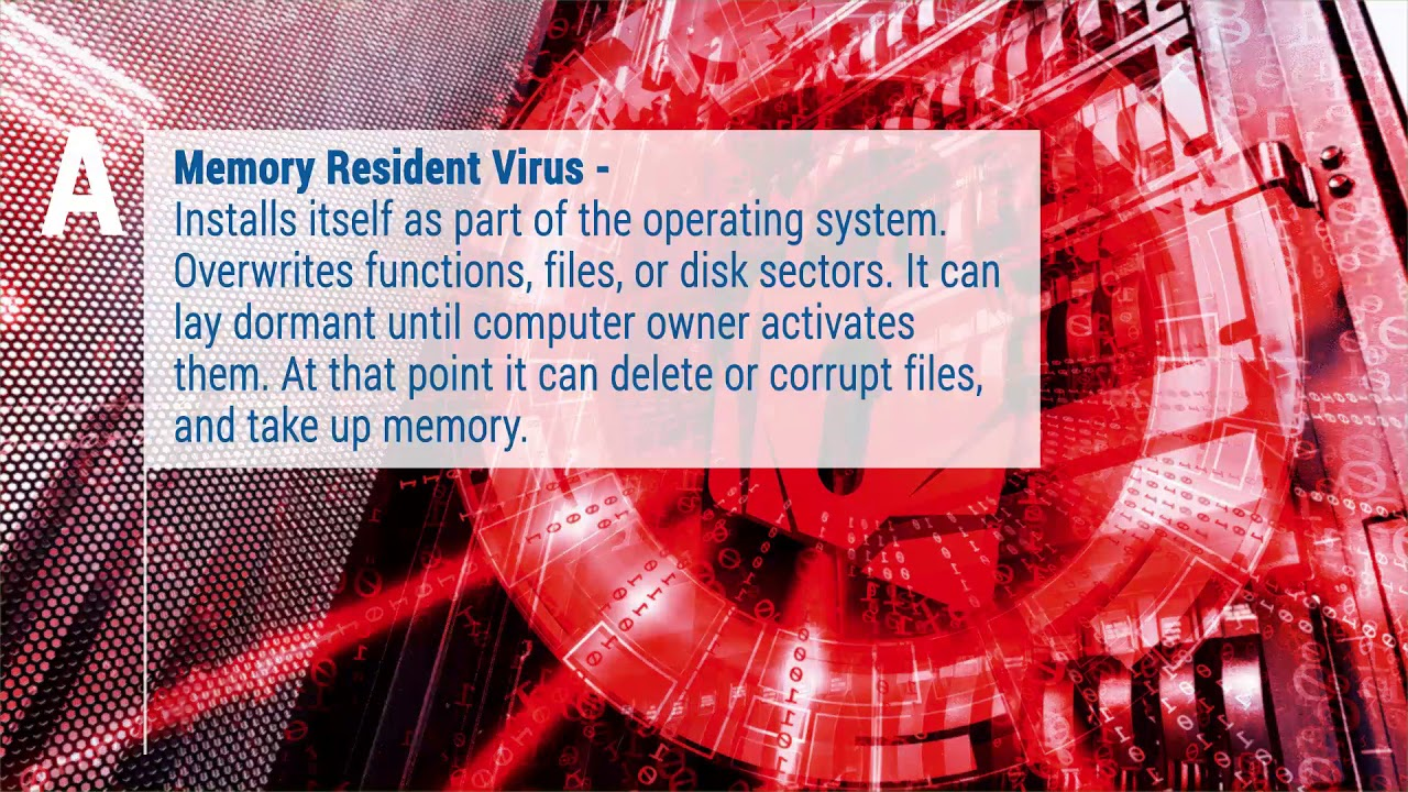 Computer Viruses by Symptom