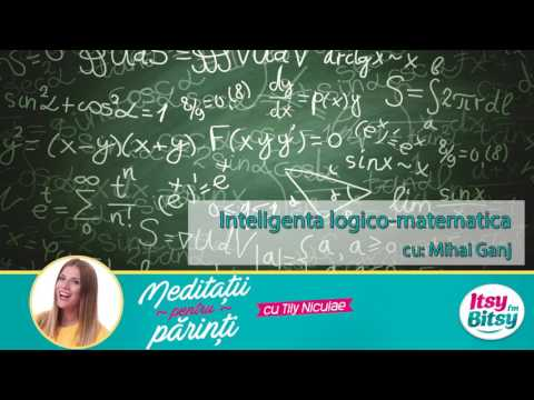 Inteligenta logico-matematica