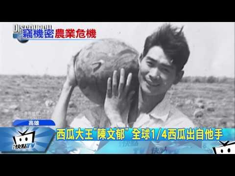 20170324中天新聞 西瓜大王「陳文郁」 全球1/4西瓜出自他手