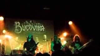 Bucovina (Live @ Daos 20.04.2013)