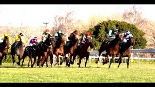 -|Believer|-  Horse Racing Music Video