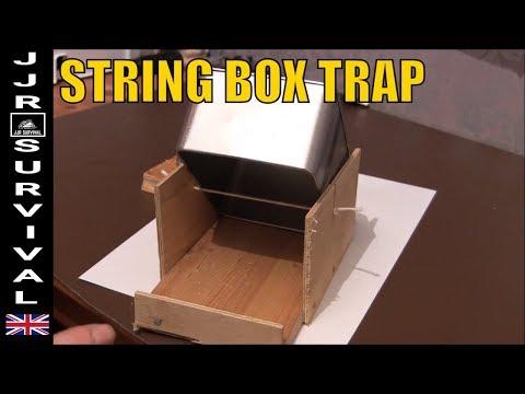 String Box Trap