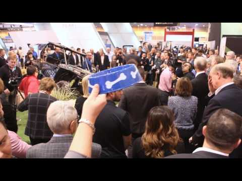 2017 Adesa Auction at NADA100