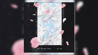 Shawn Mendes & Zedd - Lost In Japan (Official Audio)