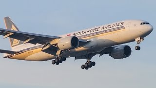 HEAVY SUNSET ARRIVALS | Melbourne Airport Plane Spotting - Featuring 777, 767, A330