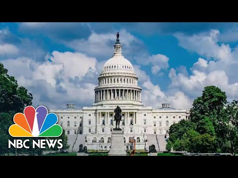 Record Number Of Republican Women Elected To Congress In 2020 Election   NBC News NOW