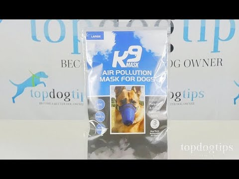 K9 Mask Air Pollution Mask for Dogs Review