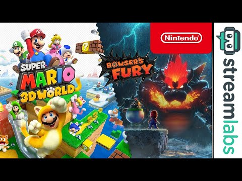 Chiil Stream & Mario 3D World (Nintendo Switch)