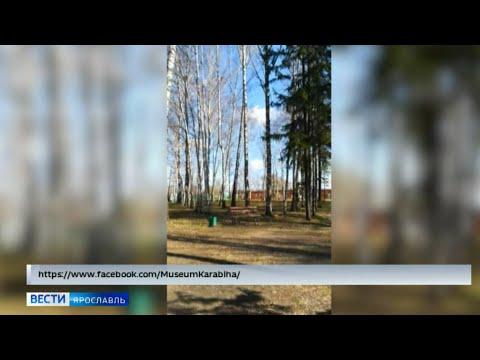 Как ярославские музеи отмечают свой профессиональный праздник на просторах интернета, узнали «Вести»