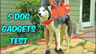 5 Dog Gadgets on Amazon - Part 3