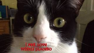 I Feel Love - a Whirli Placebo cover of Donna Summer