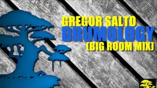 Gregor Salto - Drumology (Big Room Mix)