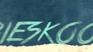 Klimat - Niebieskooka (Official Lyrics Video) Disco Polo 2014