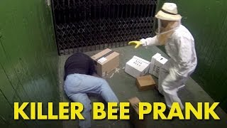 Killer Bee Prank - From BlackBoxTV