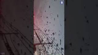 Driver captures the stuff of a Hitchcock horror as super-flock fills the sky in Texas