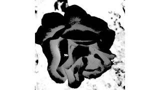 RahRah Q- Black Rose (Audio Only)