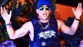 MC Frank - Estorei a Boa  ( DJ Selminho )  Lançamento 2013''
