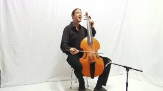 Close Encounters (Clouseau Cover) for Voice and Viola da gamba