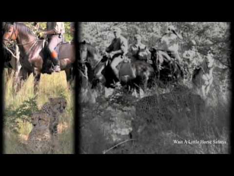 African Big Five Horse Safari Full Version