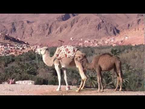 Marocco – Da nord a sud, la magia di una terra senza tempo