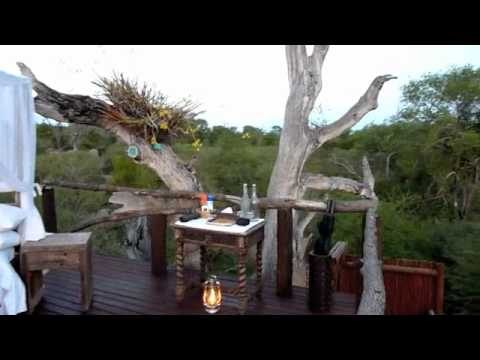 Treehouse Night at Lion Sands, South Africa
