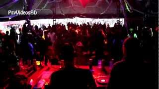 Liquid Soul vs. Dj Martin @ Burning Mountain Festival 2012