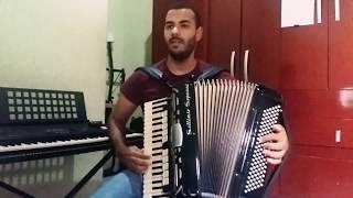 Despacito - Luís Fonsi ft. Daddy Yankee - (sanfona/Acordeon cover)